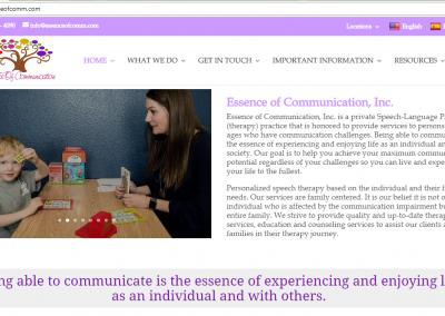Essence of communication
